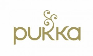 Gold Pukka Logo for web (320x192)